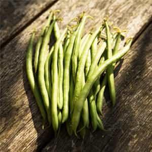 keanekaragaman sayuran organik