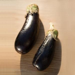sayuran pendukung kesehatan ibu hamil
