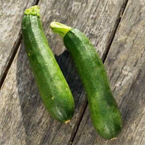 Zucchini SayurBox