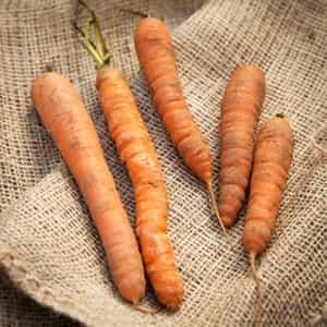 sayur sebagai bahan pewarna alami