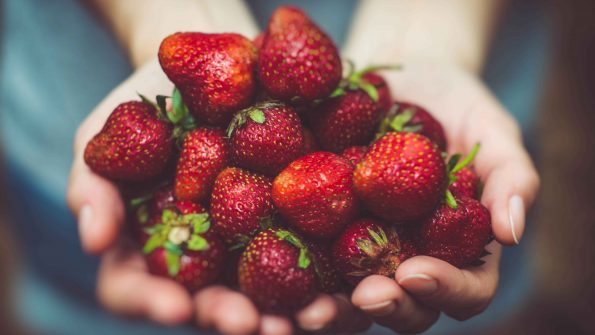 Fall in love with strawberry