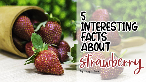 5 fakta menarik seputar strawberry