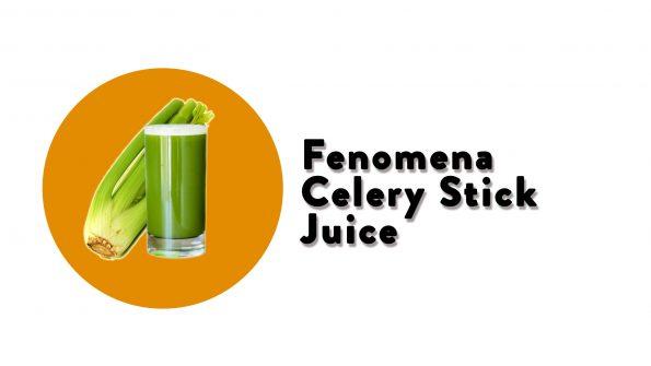 celery stick juice