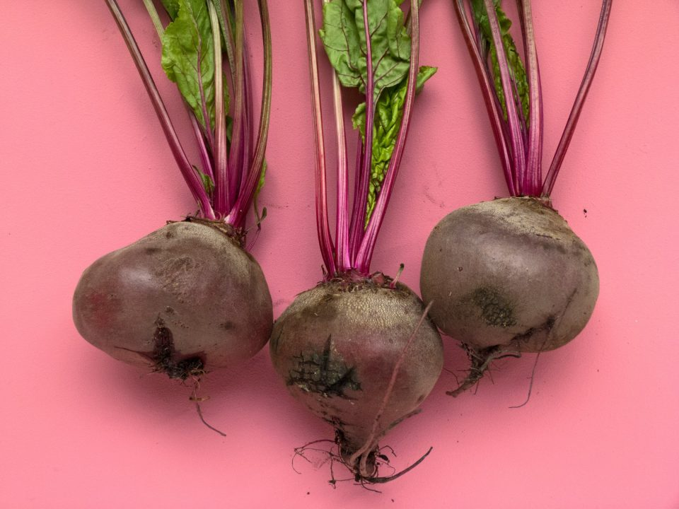Beetroot on Pink Background