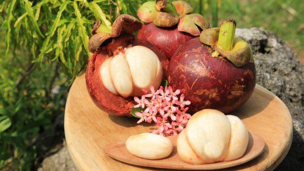 buah eksotis indonesia