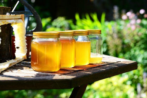 kandungan madu dan manfaatnya untuk kesehatan