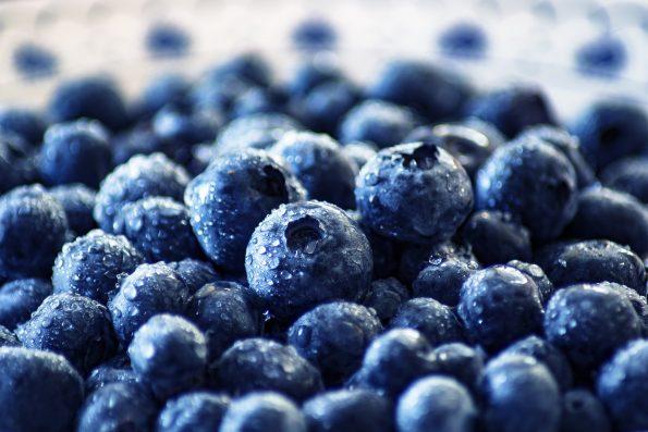 makanan pahit yang baik untuk kesehatan
