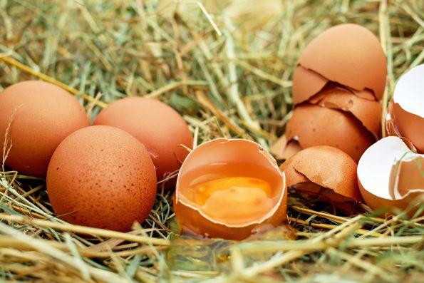 Cara memilih telur yang baik
