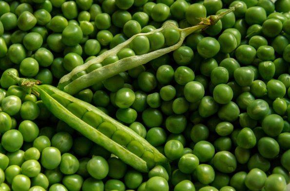 Manfaat Kacang Polong