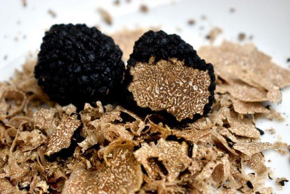 Manfaat Jamur Truffle